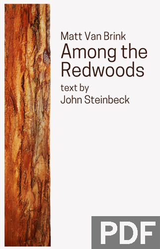 Among the Redwoods - COMING SOON - Mixed Chorus (SATB) a cappella