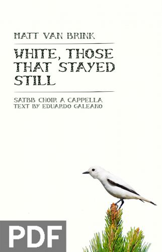 White, Those That Stayed Still - Mixed Chorus (SATBB) a cappella